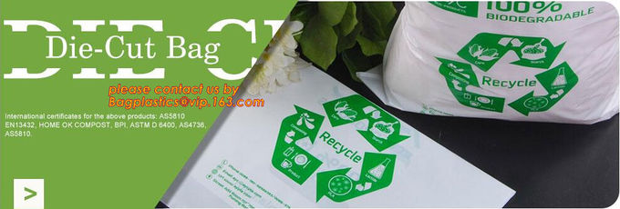YANTAI BAGEASE PACKAGING PRODUCTS CO.,LTD. 品質管理 19